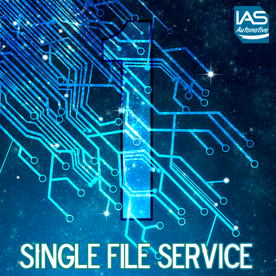 Picture of Single File Service